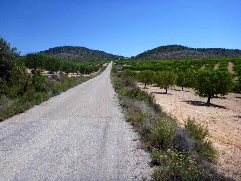 Fuenterrobles - En direction du Collado de la Bicuerca